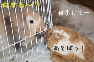 U_032_1